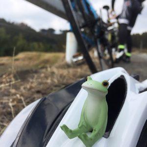 ぽれぽれ,ポレポレ,サイクリング,カエル,コポー,自転車,クロスバイク,ロードバイク,女性,女
